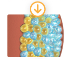 target and crystallize fat cells